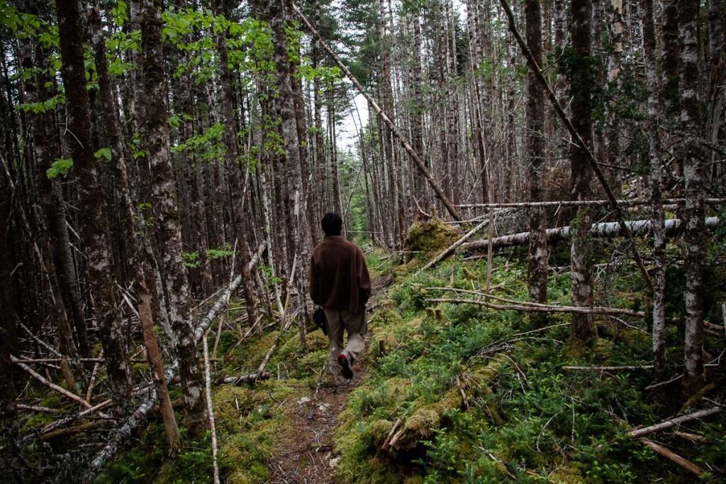 Life-Off-Grid_Newfoundland_03